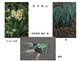 yuudoku010