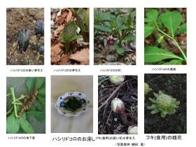 yuudoku014
